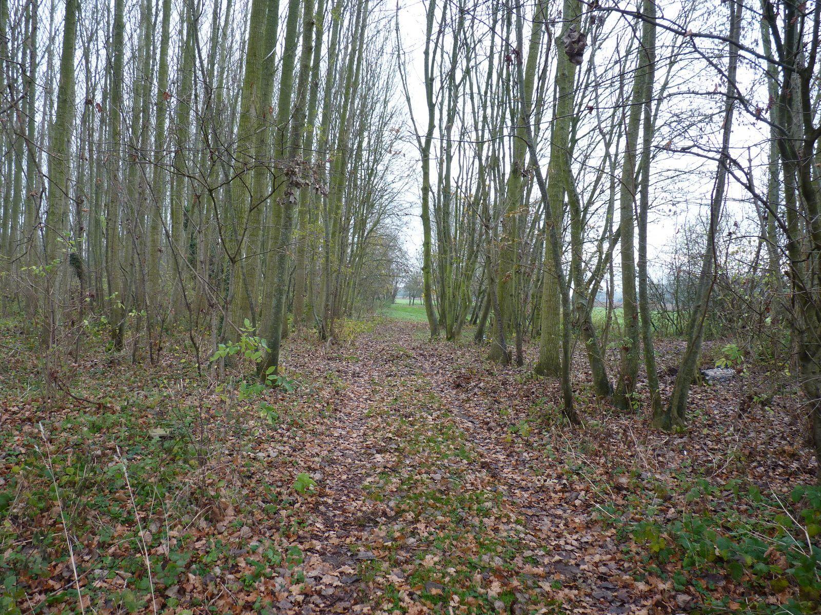 Photos prises sur la commune de Esmery-Hallon