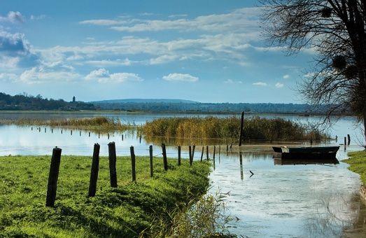 Découverte des marais du Cotentin le mardi 5 septembre