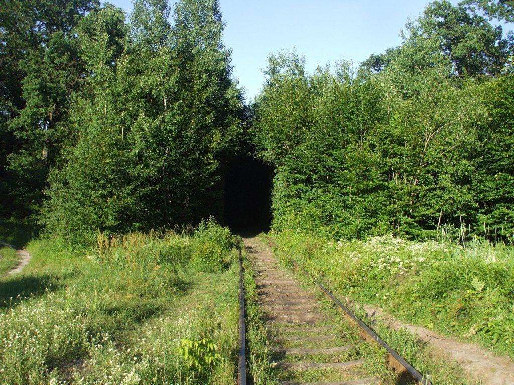 Une autre Ukraine avec ce tunnel de l'amour