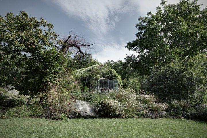 Transformer un cabanon de jardin en boite verte
