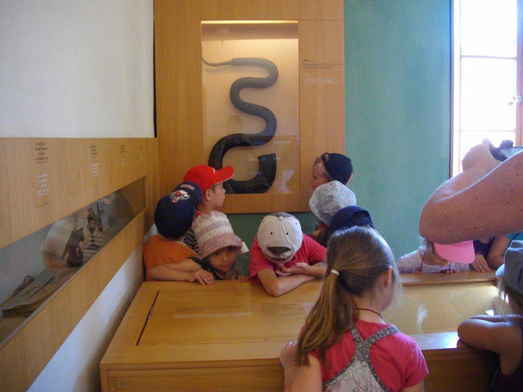 Visite au musée Oberlin