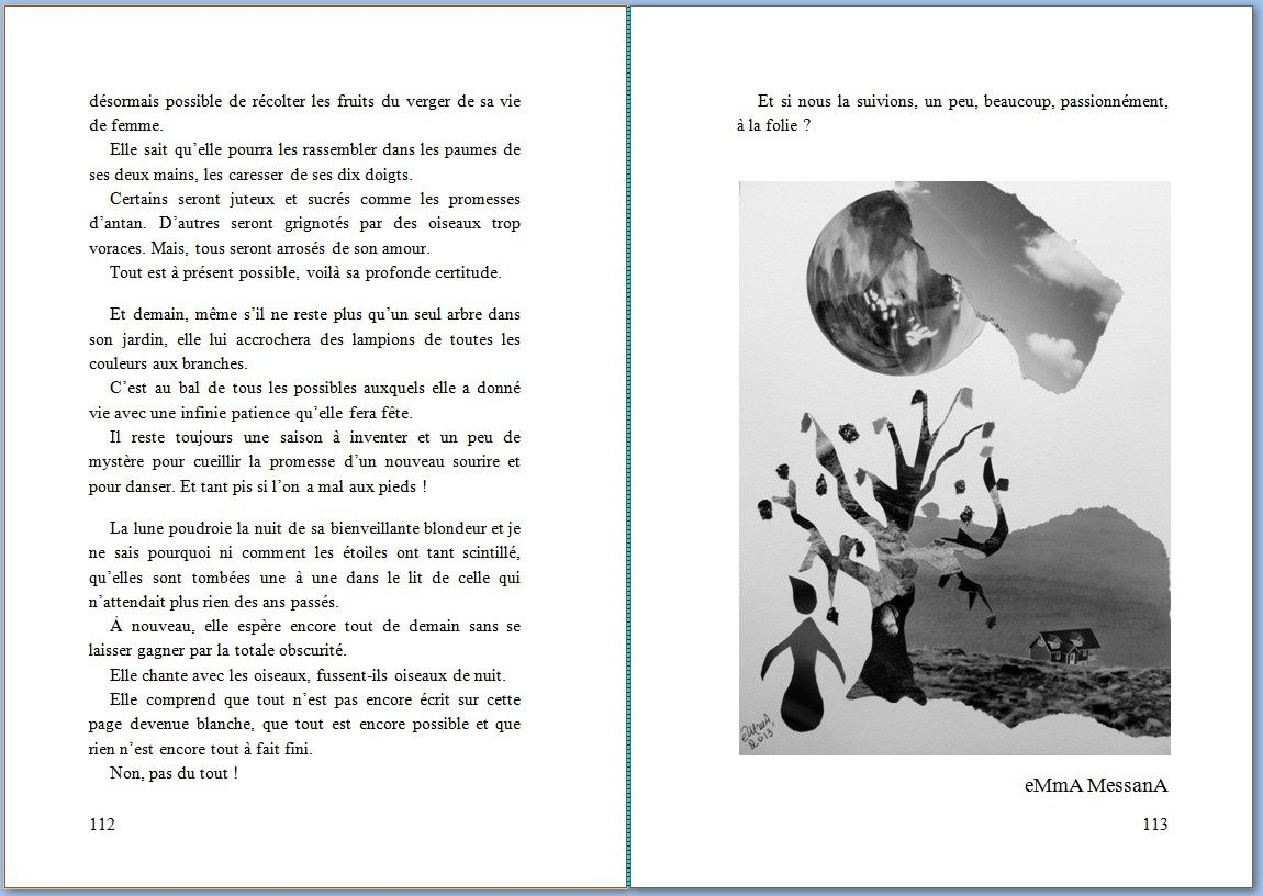 "© eMmA MessanA Les Collages d'eMmA MessanA. Le collage ""La patience des possibles"" figure dans l'ouvrage collectif ""La marguerite des possibles"""