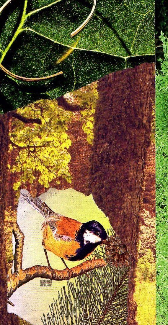 """Les Collages d'eMmA MessanA, collage sur carnet """"Herbier de papier"""", pièce unique. Verso du carnet © eMmA MessanA"""