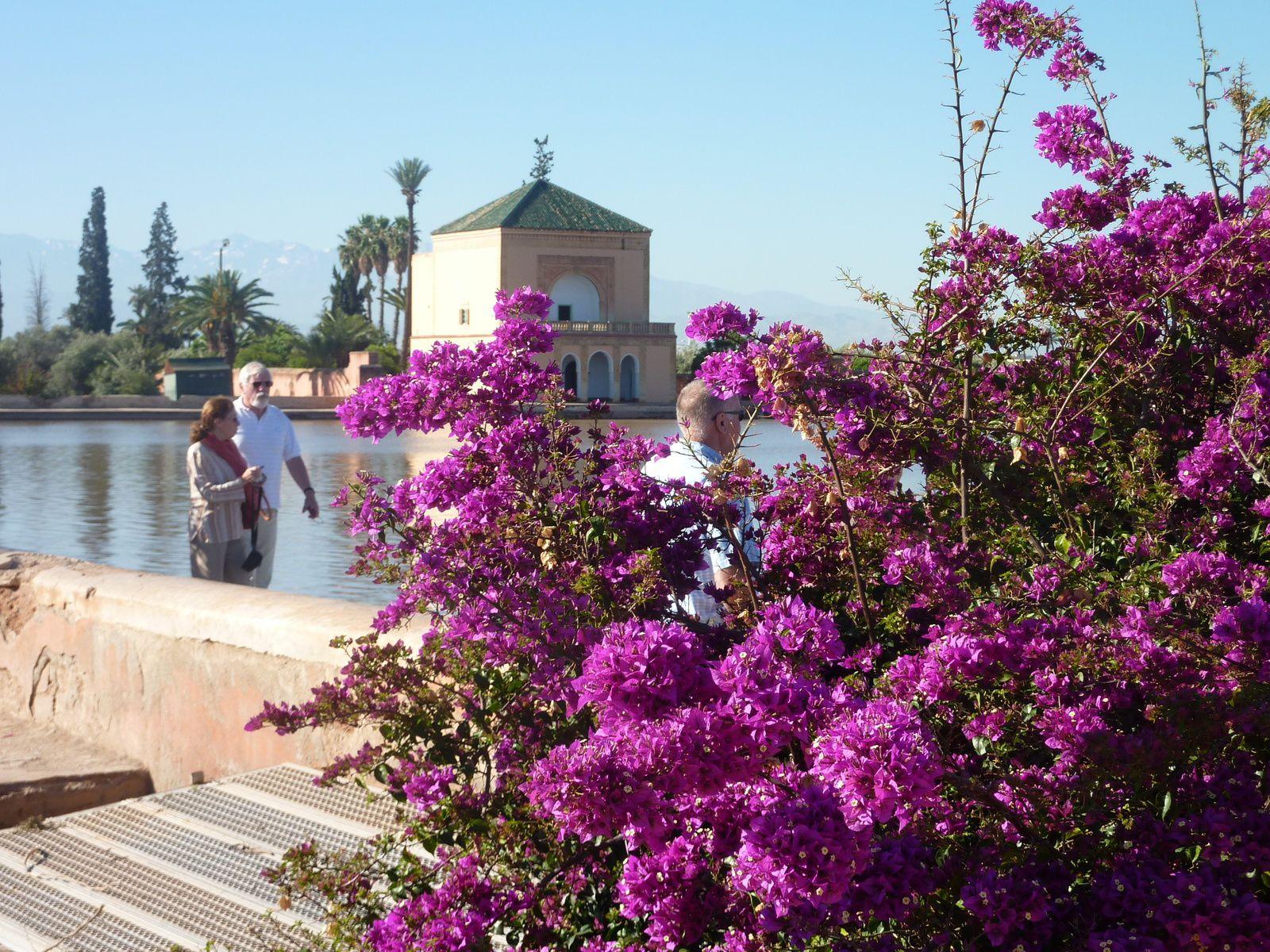 Un jardin d'eau et d'oliviers : la Ménara