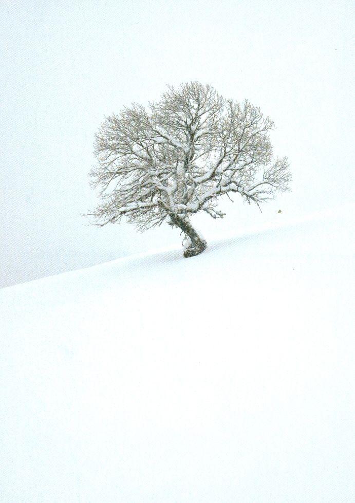 Les hivers d'Emmanuel Boitier