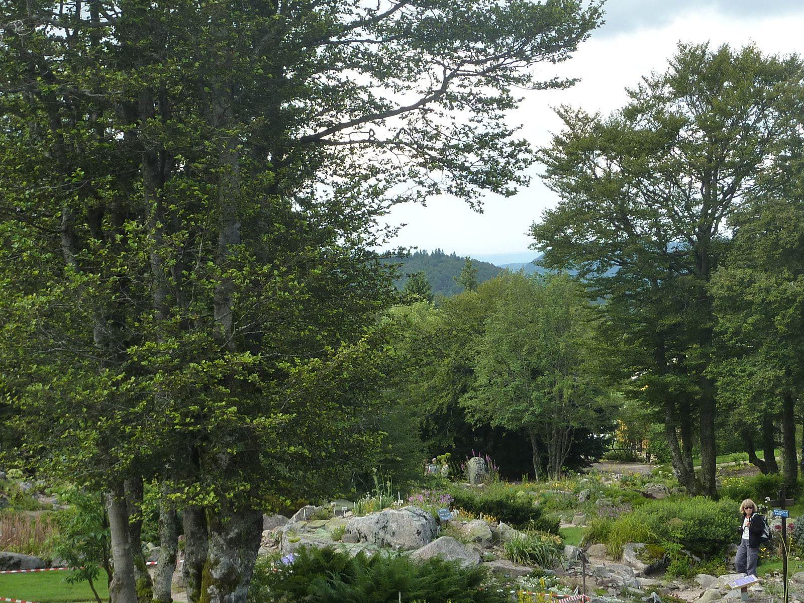Découverte du jardin du Haut Chitelet