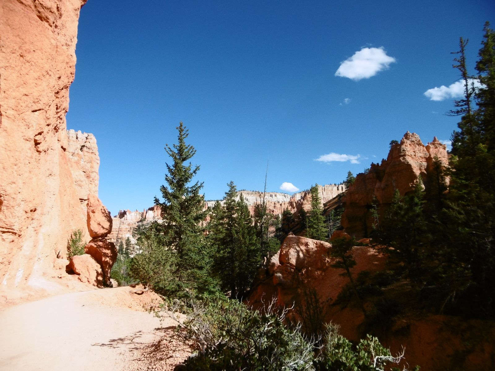 USA #8 Bryce Canyon