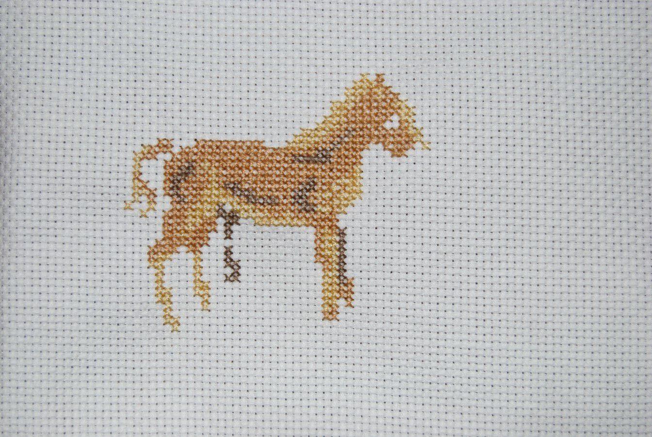 Un cheval.... des ???