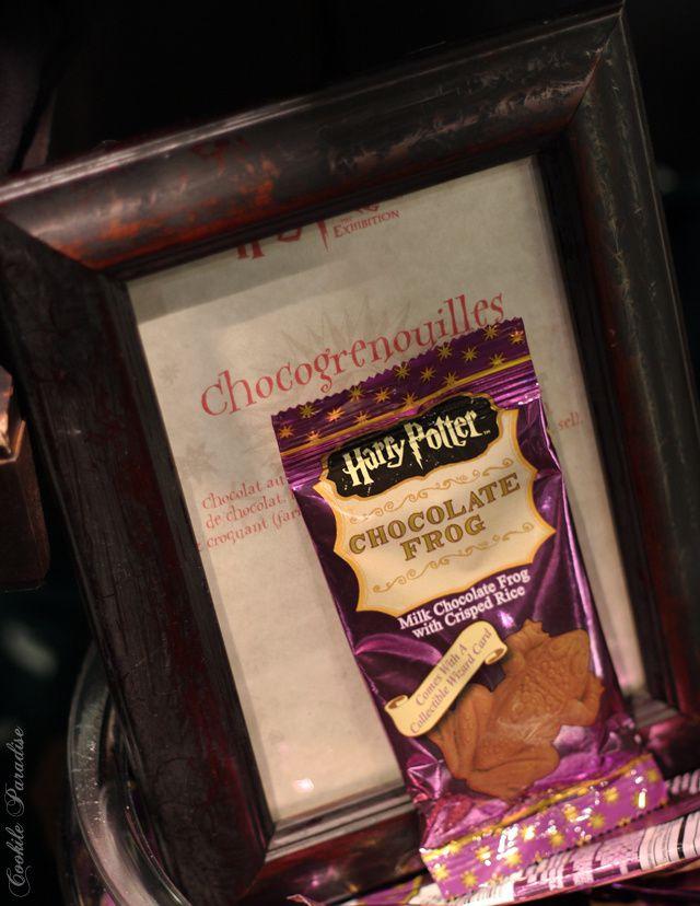 Harry Potter l'exposition à la cité du cinéma Paris-Saint Denis