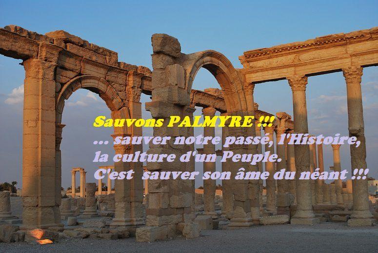 Catastrophe sans précédent !!! - En Syrie, la cité antique de Palmyre tombe aux mains de Daech