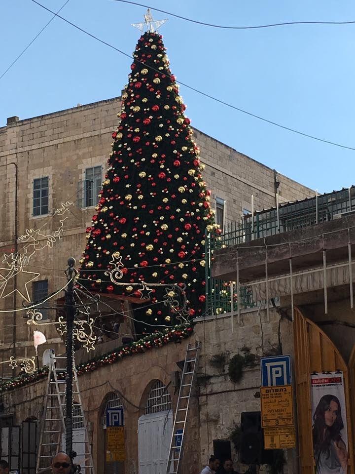 TERRE SAINTE : Les villes se sont parées des couleurs de Noël autour du sapin...,