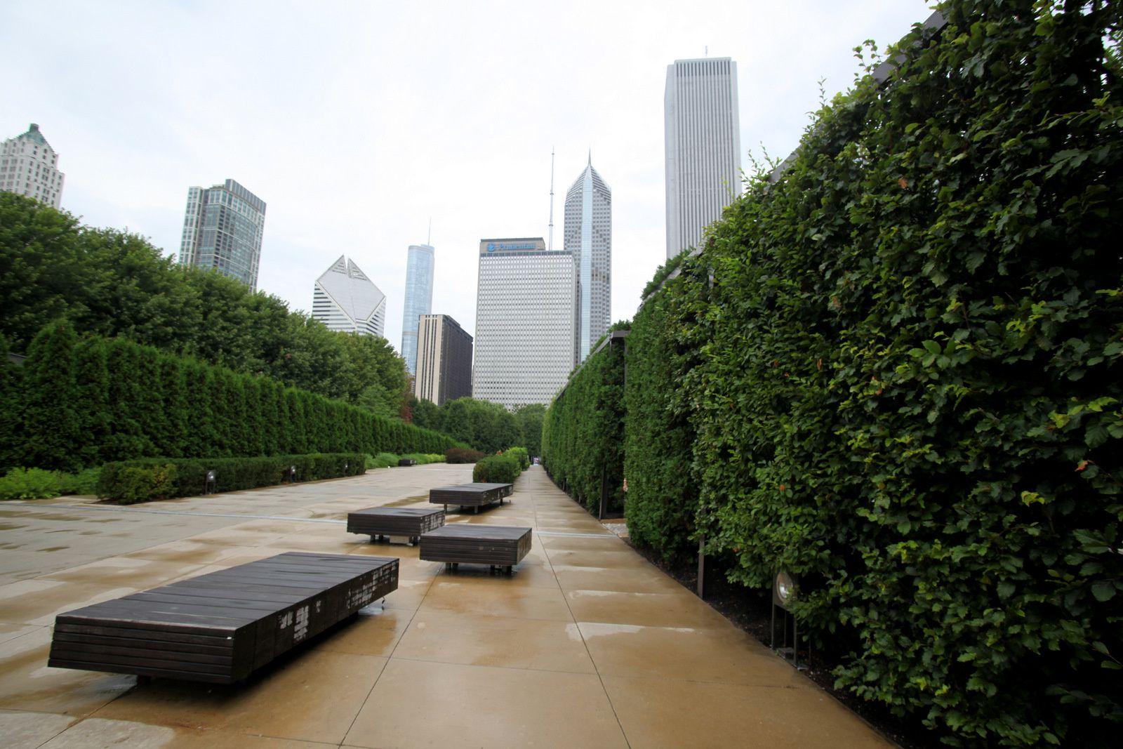 Chicago New York. (Saison 6)