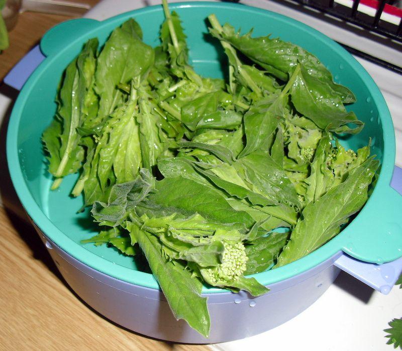 brocolis sauvages, cuits à la vapeur,et huile olive ail et persil, ils sont plus digestes que les cultivés et de gout plus fins