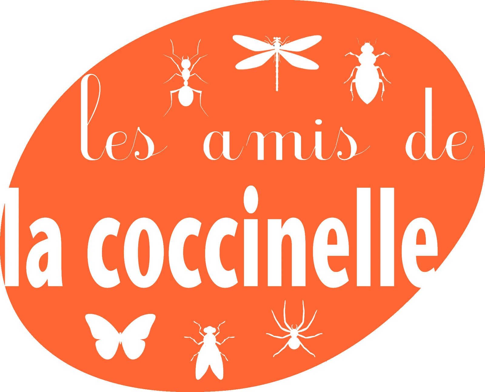 les amis de la coccinelle prennent leur envol colo at home le blog de la coccinelle 7 points. Black Bedroom Furniture Sets. Home Design Ideas
