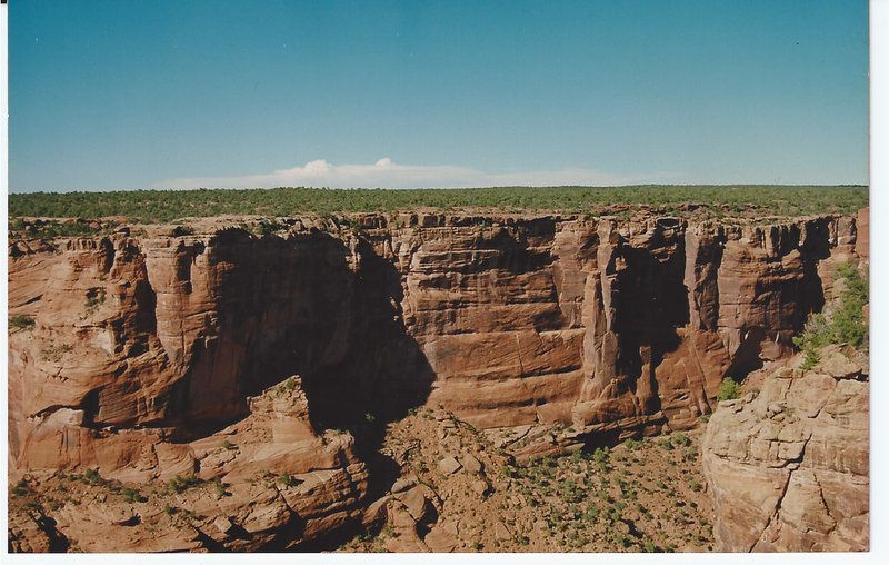 Canyon deChinle. Pays Navajo. Arizona