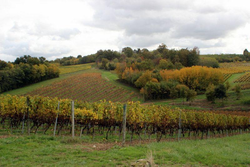 Couleurs Gironde