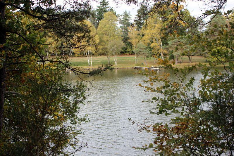 L' étang de Meyrignac