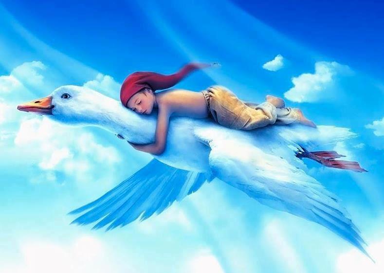 l'oiseau bleu : christian rabussier
