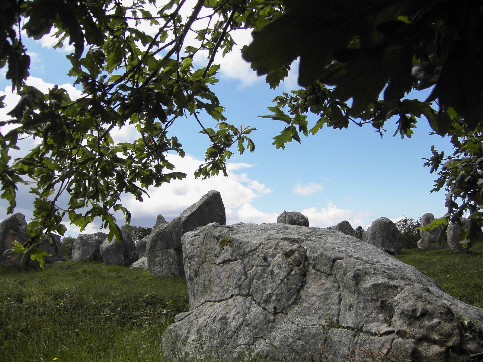 Sortie annuelle des randonnées à Carnac