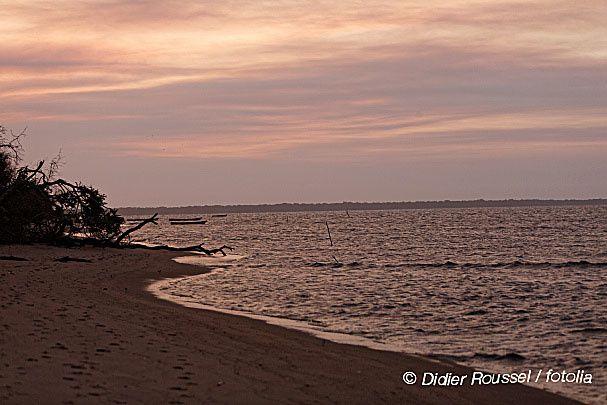 Lumière sur les côtes surinamaises
