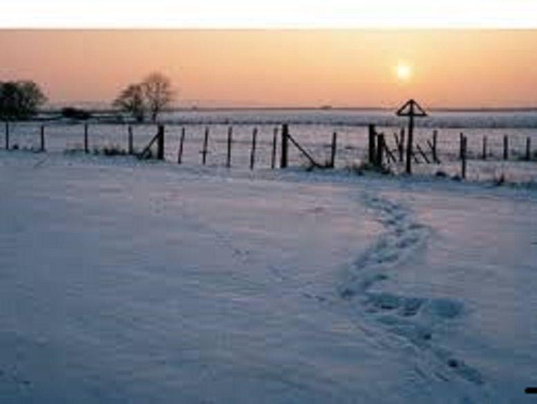 Jonas Kaufmann - Winterreise au TCE...die noch keiner ging zurück.
