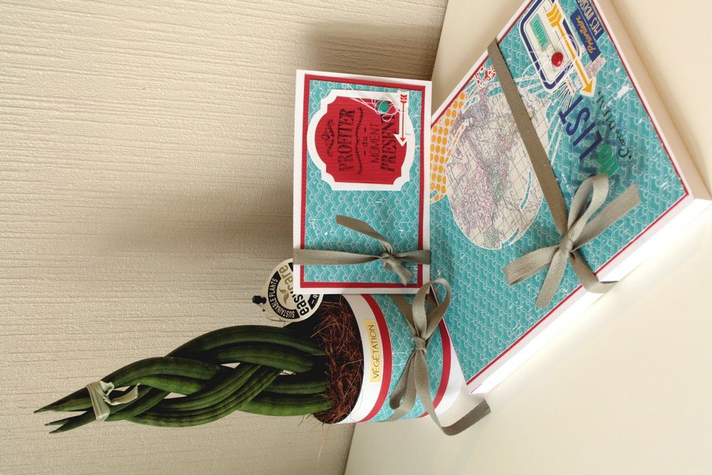 Set de bureau, carte, plante, carnet to do list