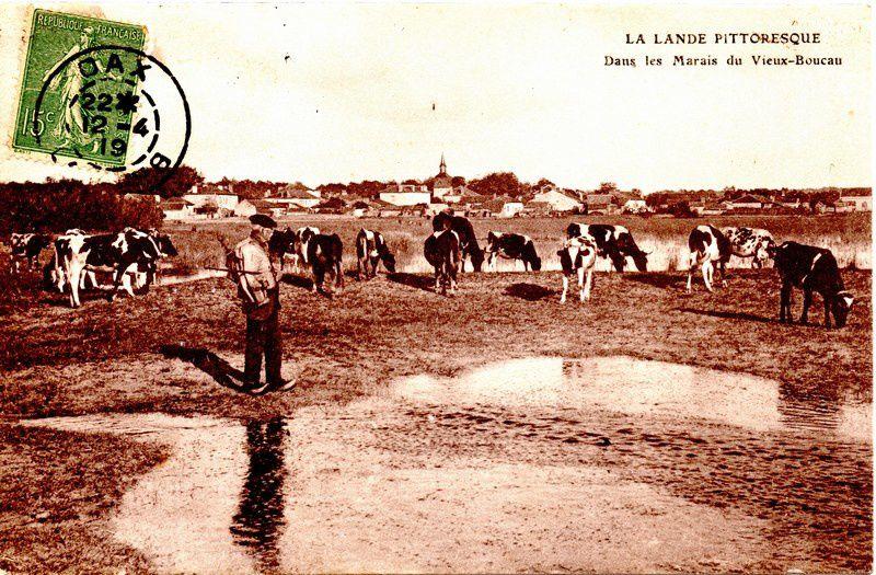 Vieux -Boucau, le Junka en 1919