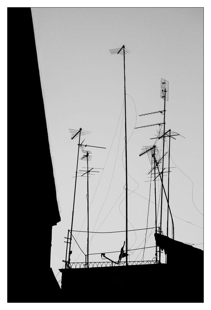 [Photos] Champ d'antennes.