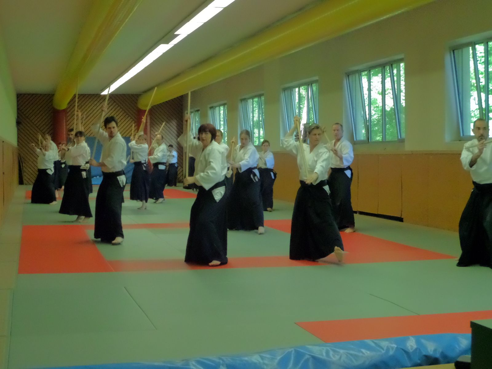 Stage Aikido à Karlsruhe