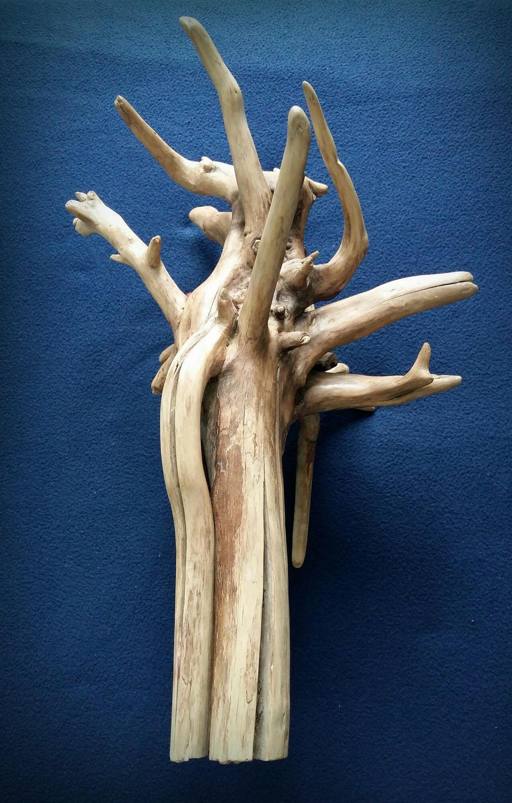 Work in progress (Driftwood)