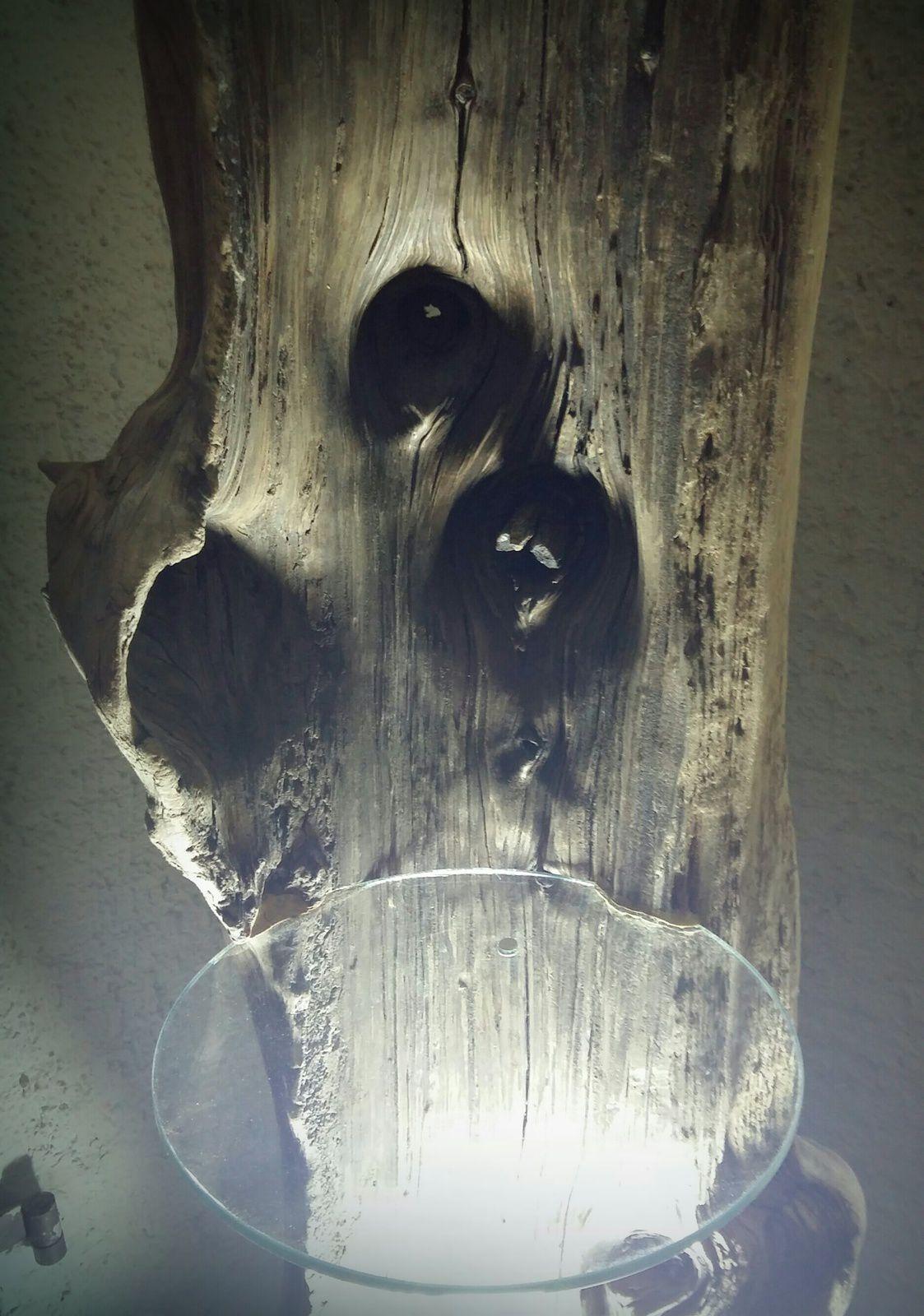 Tronc bois flotté étagères