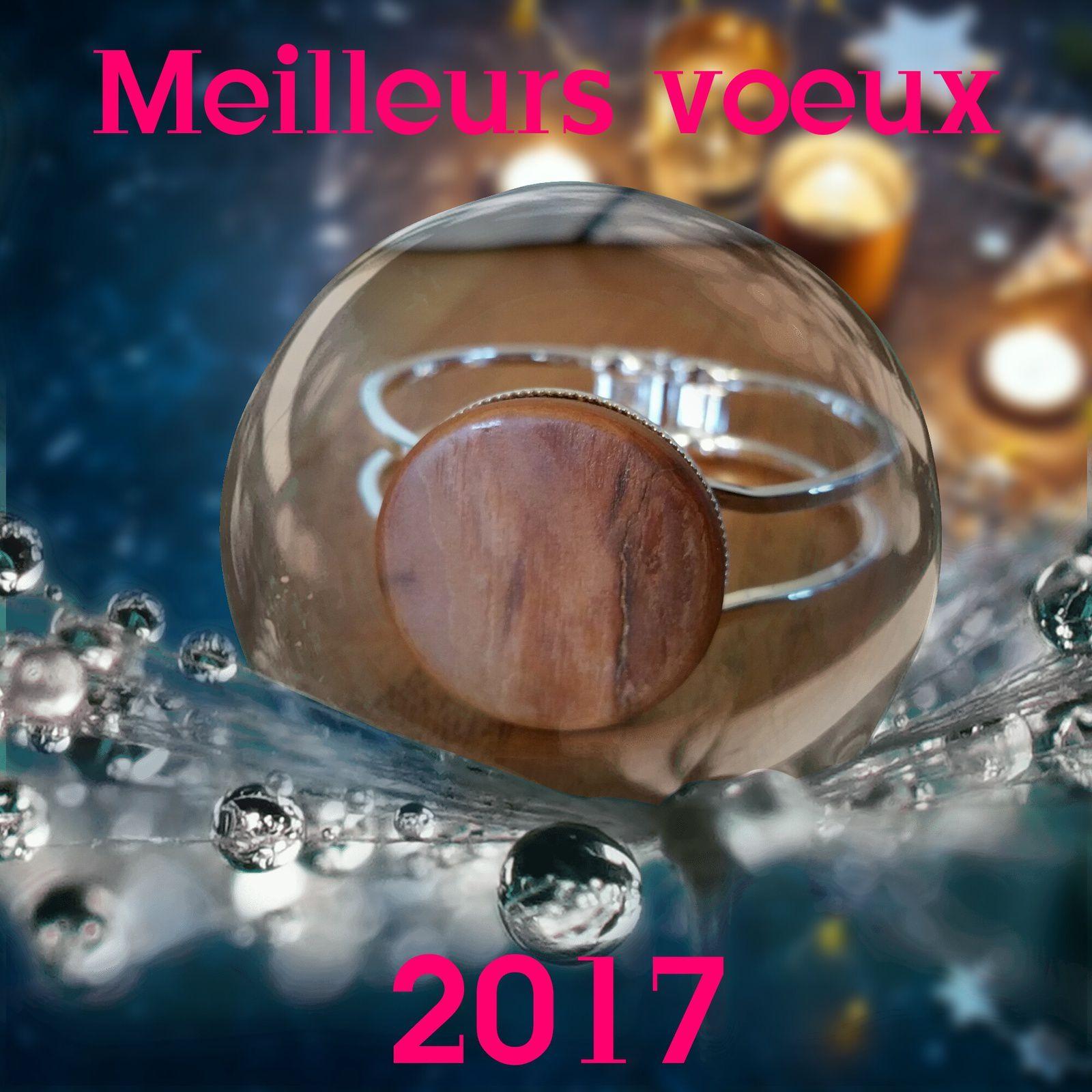 Très bonne année 2017 à vous tous !