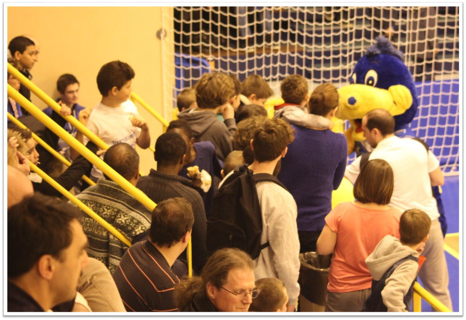 Pontault-Combault HB vs Massy (ProD2 - 14.03.2015)