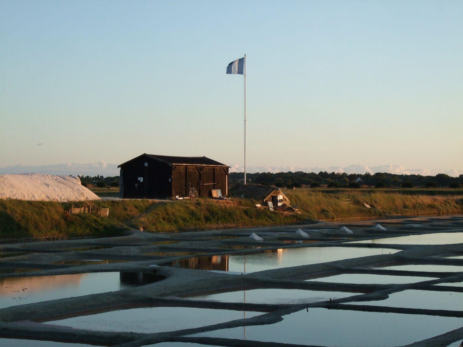Coucher de soleil sur les marais de l'Ile d'Olonne (en Vendée)