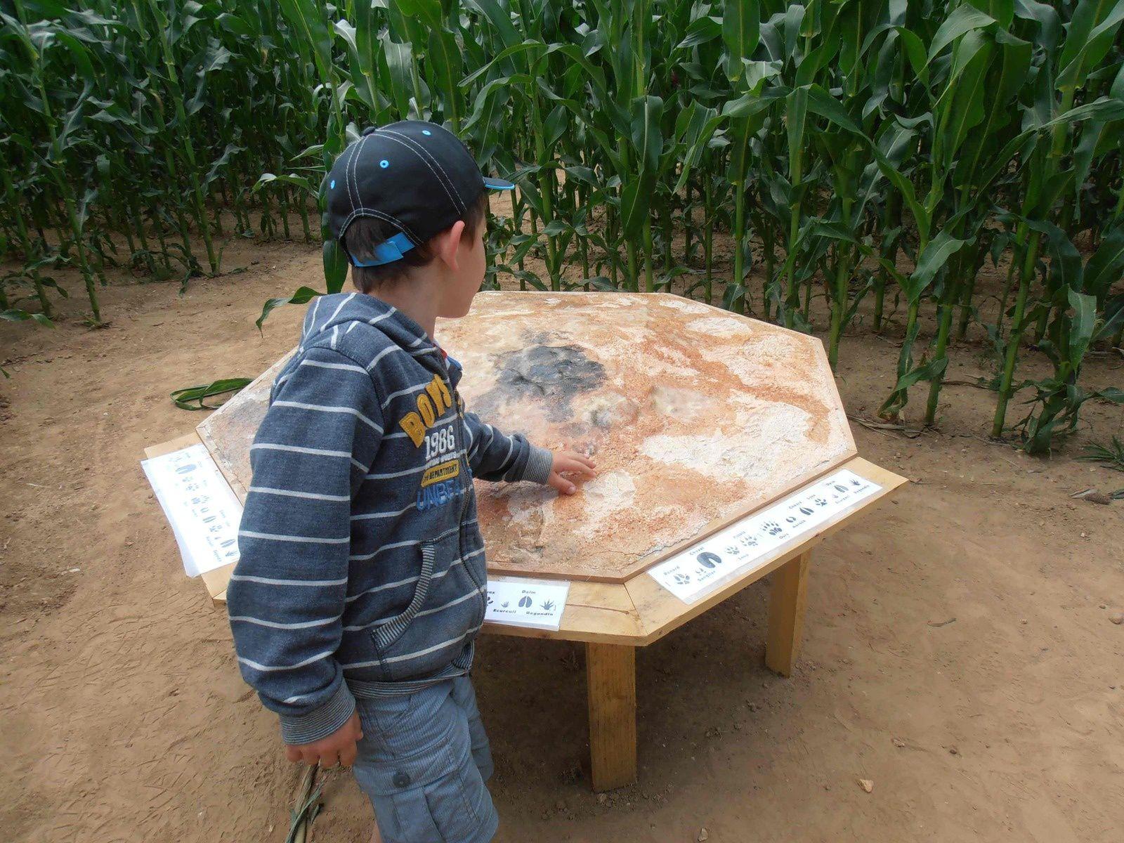 Une visite pour un petit de six ans en Eure-et-Loir