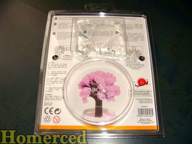 (Japon) arbre bonsaï magique Sakura