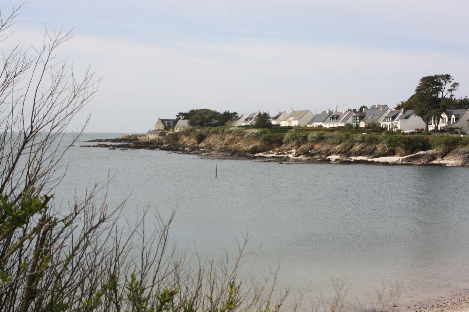 Avril 2010 sur la côte de Billiers (56).