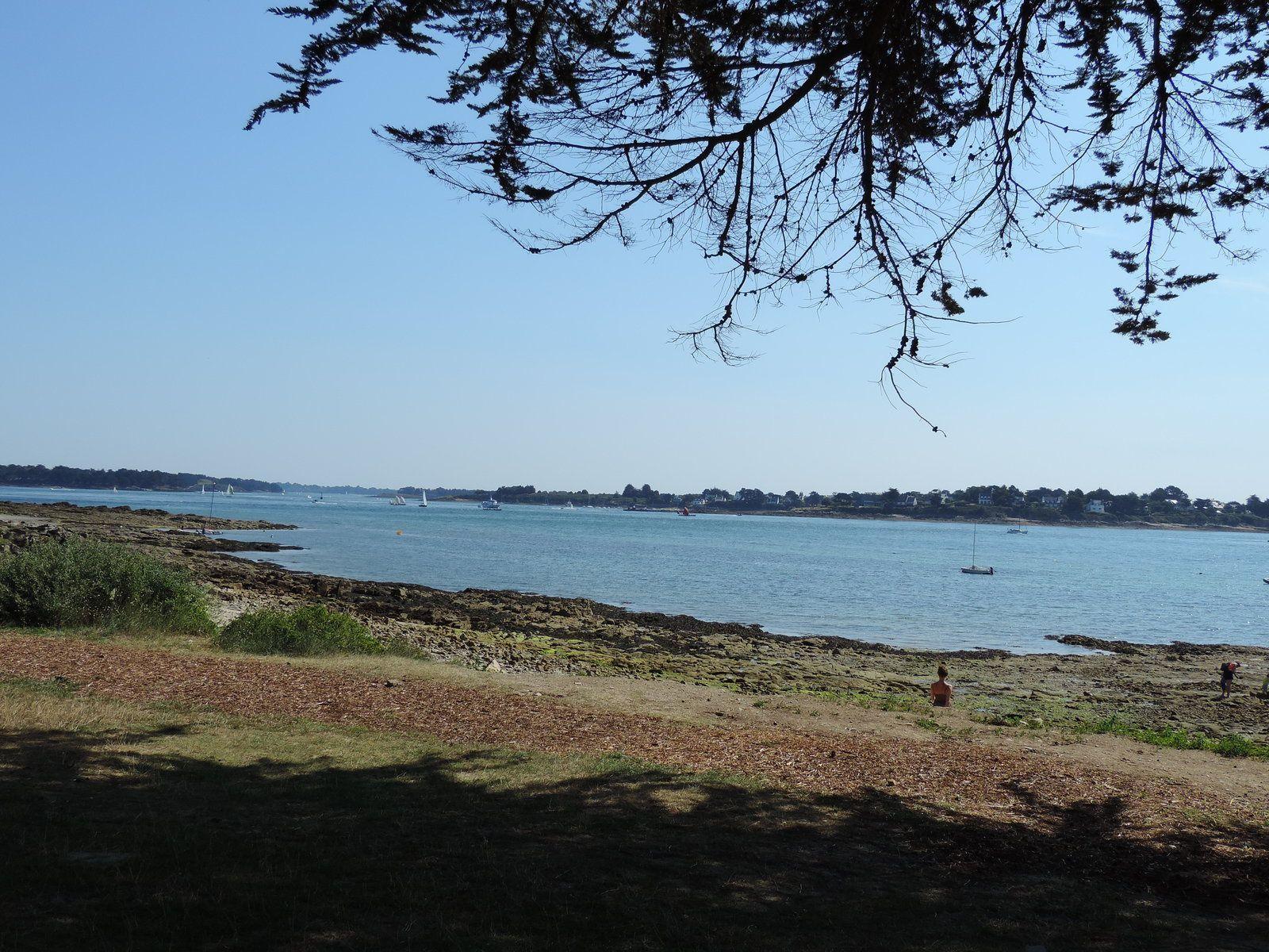 La côte à Locmariaquer