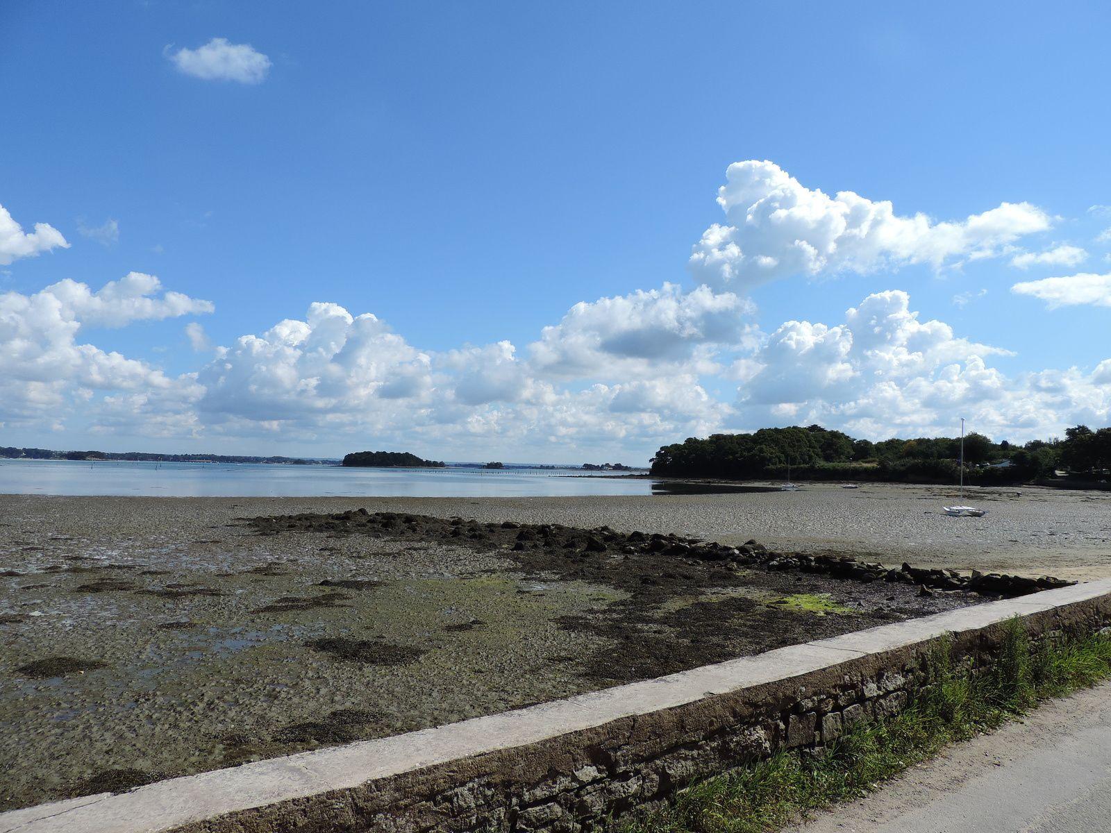 L 39 ile aux moines entre mer et randonn es for Cote et jardin ile aux moines