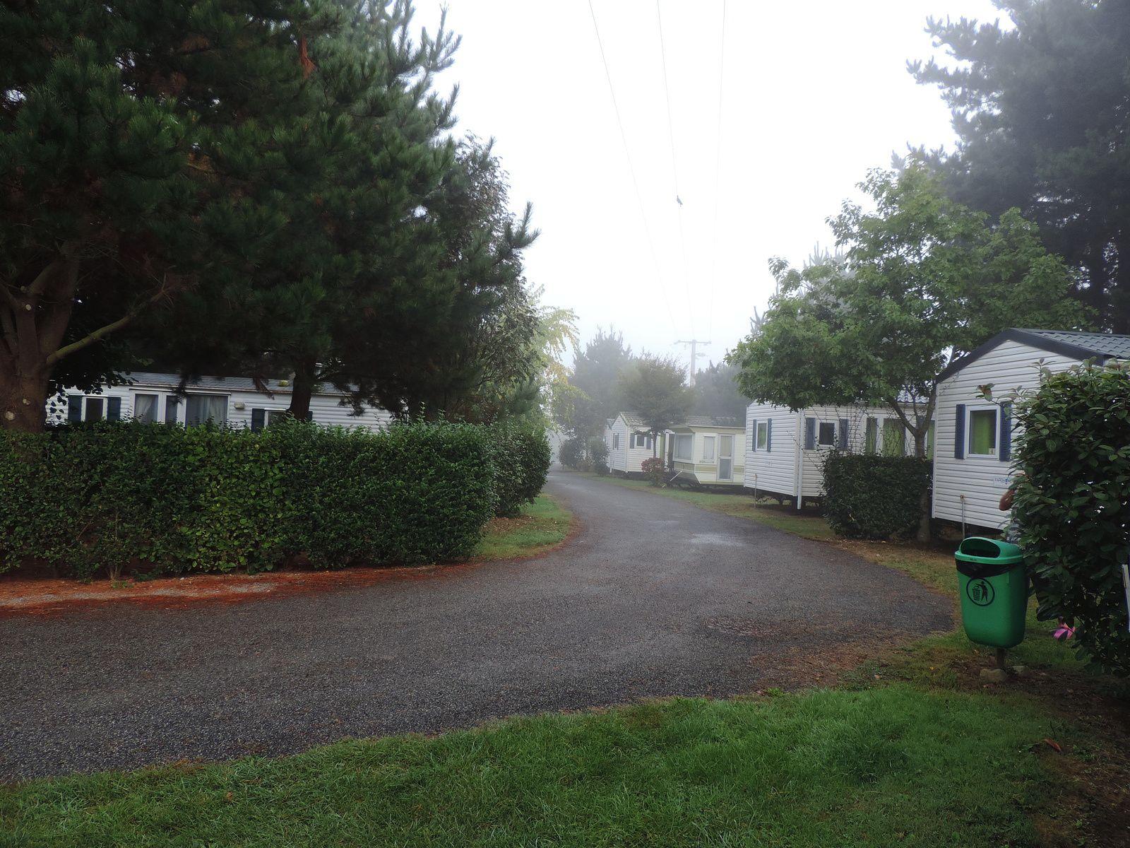 une des allées, tôt le matin sous le brouillard de septembre