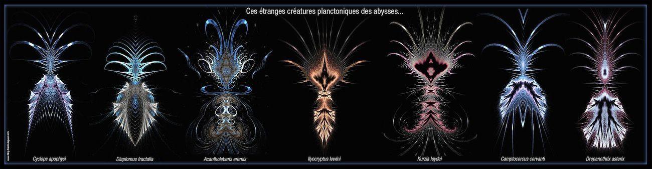 il y a même de l'art dans le plancton