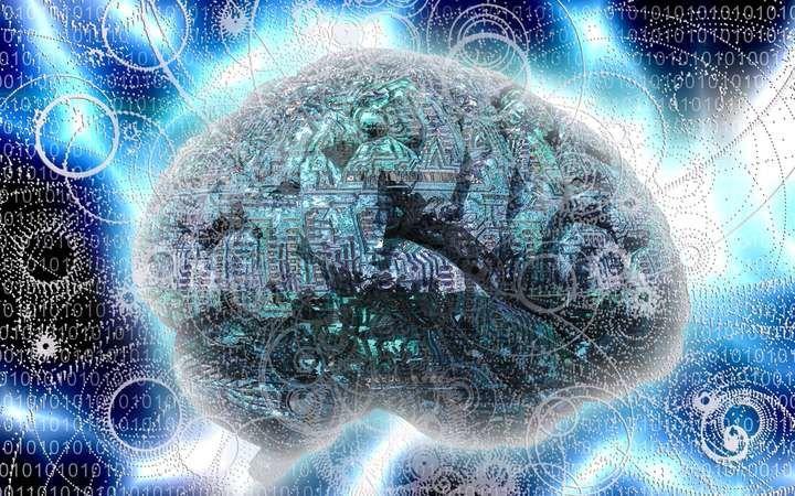 notre vaisseau cerveau