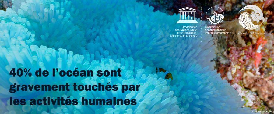 2016 ? 40 % des océans atteints par l' homme  dont son plastique