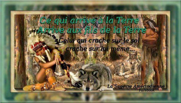 Le destin des Indiens d'Amérique annonce celui de l'ensemble des habitants de la planète