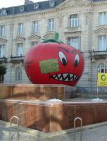 OGM : les gouvernements européens jouent au pompier pyromane !
