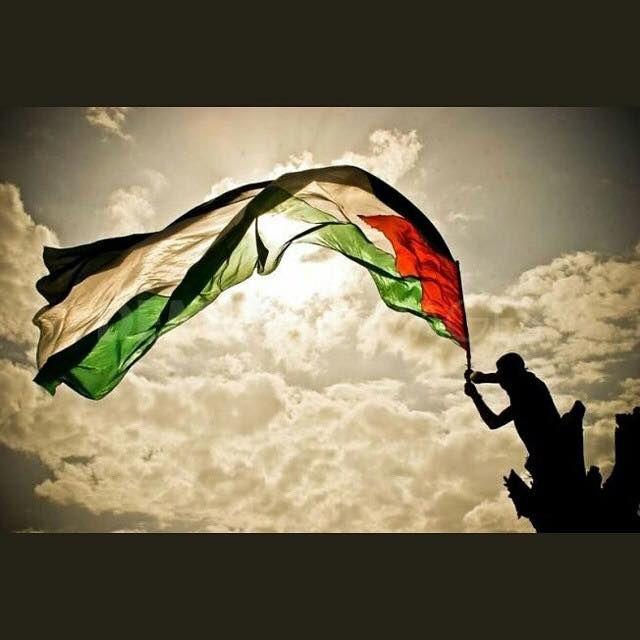 Assemblée nationale reconnaissance de l'État de Palestine :  Pour : 339 . Contre 151 !  Adopté !