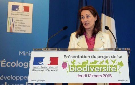La ministre de l'écologie Ségolène Royal présente les grands principes de la loi sur la biodiversité jeudi 12 mars à Paris.