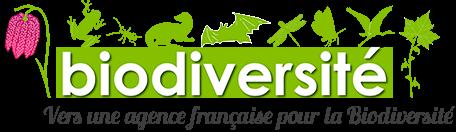 Une nouvelle agence française en cours de création
