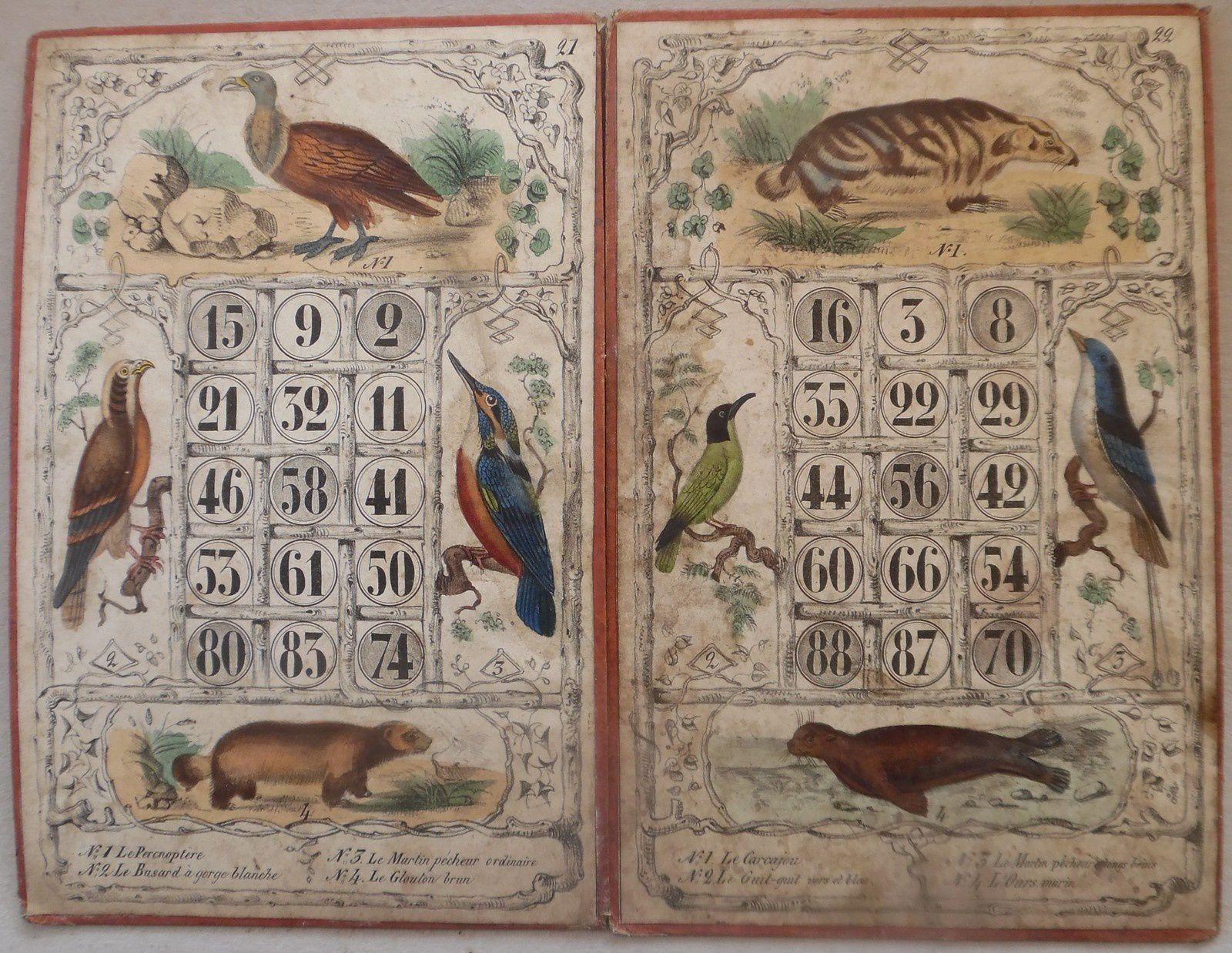 c 21 : le Percnoptère, le Busard à gorge blanche, le Martin pêcheur ordinaire, le Glouton brun - c22 : le Carcajou, le Guit-guit vert et bleu, le Martin pêcheur à longs brins, l'Ours marin