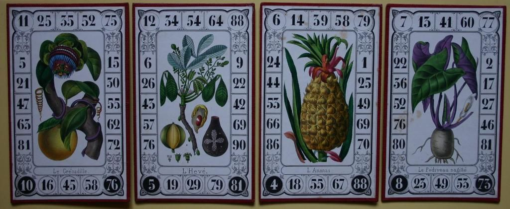 "cartons du jeu ""la Pommone des Indes"" ( hors collection )"